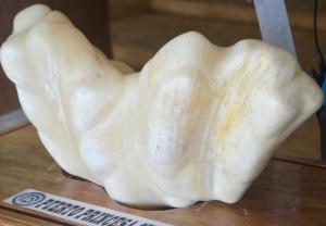 World's biggest pearl